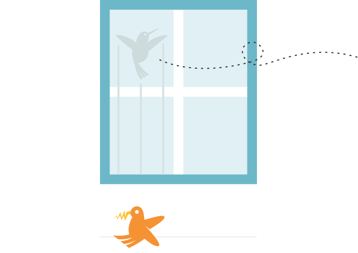 404 image of bird hitting window